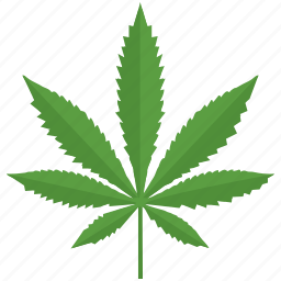 canabis, drug, leaf, plant icon