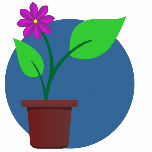 flower, green, home, leaves, violet icon