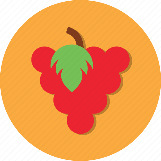 food, fruit, grape, health icon