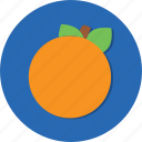 food, fruit, orange, healthy, vegetable