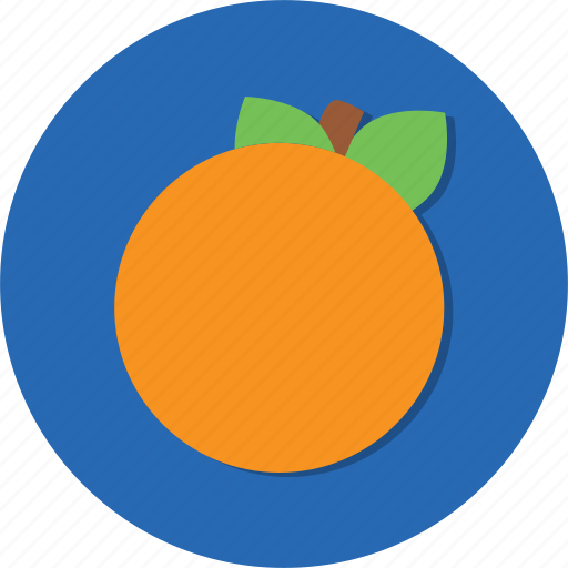 food, fruit, healthy, orange, vegetable icon