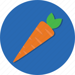 carrot, food, fruit, vegetable icon