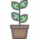 accessories, bush, home, plant icon