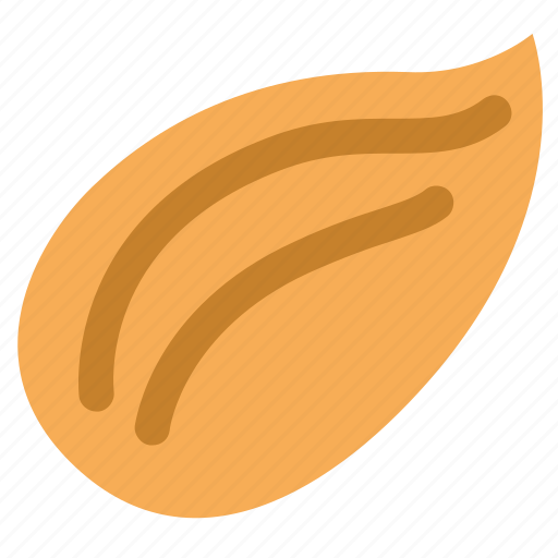agriculture, almonds, food, foodstuff, kernel, nut, seed icon