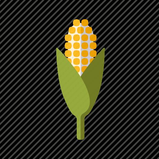 agriculture, cereal plant, cob, corn, farm, food, grain icon