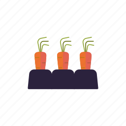 agriculture, carrots, farm, food, patch, soil, vegetables icon