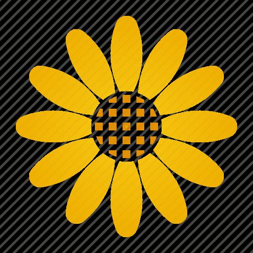 bloom, daisy, flower, innocence, yellow icon