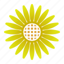 bloom, power, sunflower, yellow icon