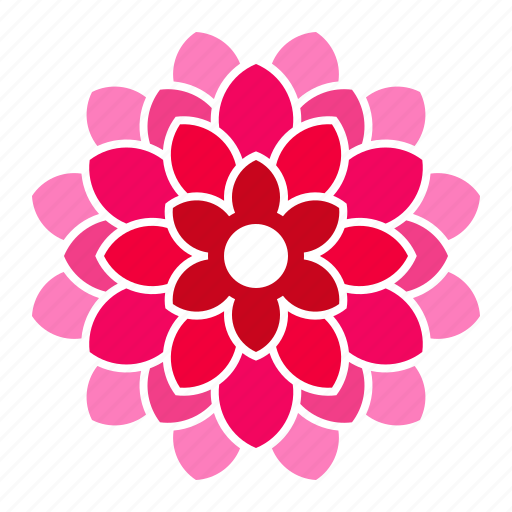 Colour flower by hung pham duy phuong bloom dahlia flower pink icon mightylinksfo