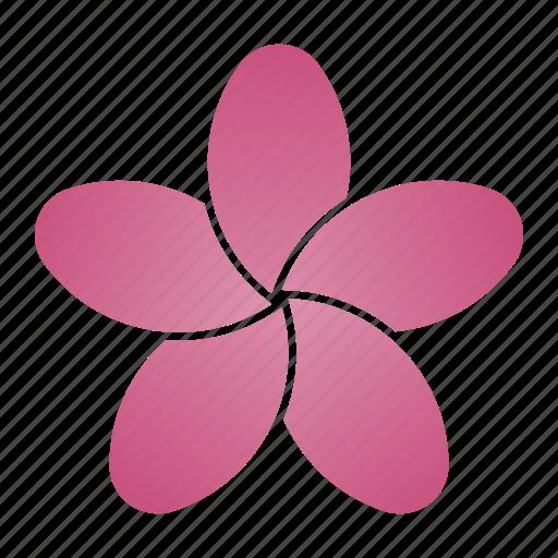 Porcelain, flower, pink, bloom icon
