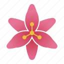 bloom, flower, lilium, lily icon