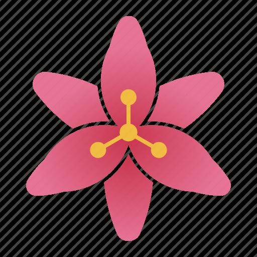 bloom, flower, lilium, lily icon