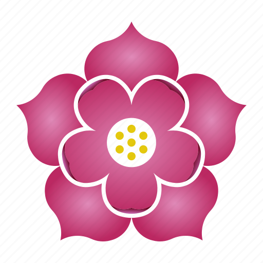 Lotus, patience, flower, purity, bloom icon