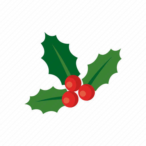 christmas decoration holiday holly berry leaf mistletoe wreath icon