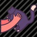 animal, cat, comforting, fluffy, hug, kitten, pet icon