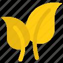 app, business, foliage, leaf, midrib, vine