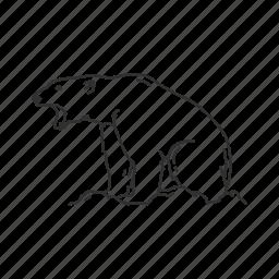 angry, bear, kodiak bear, large bear, large land mammal, polar, polar bear icon