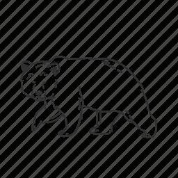 angry bear, bear, brown bear, grizzly bear, large land mammal, ursidae, wild bear icon