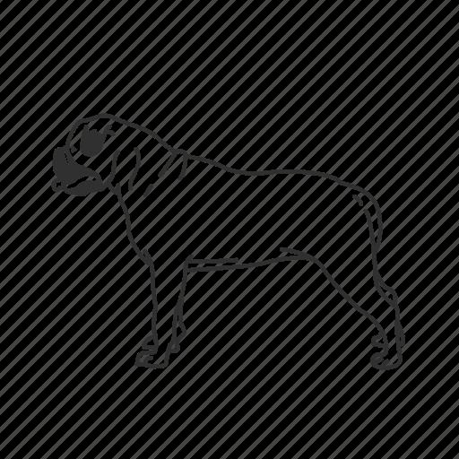 Bulldog, dog, american bulldog, large dog, medium land mammal, puppy icon - Download on Iconfinder