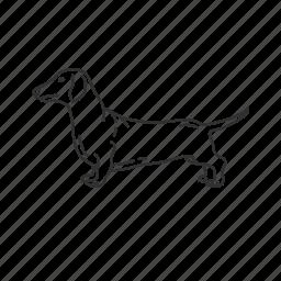 dachshund, dog, dotson, pet, puppy, small land mammal, wiener dog icon
