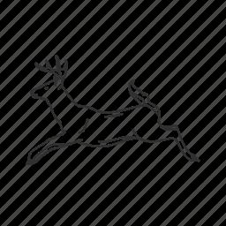 buck, cervidae ×, deer, leaping, male deer, running buck, running deer icon