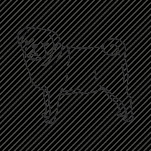chinese pug, dog, pet, pug, puggle, puppy, small land mammal icon