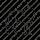 wolf, coyote, dog, female wolf, fox, medium land mammal
