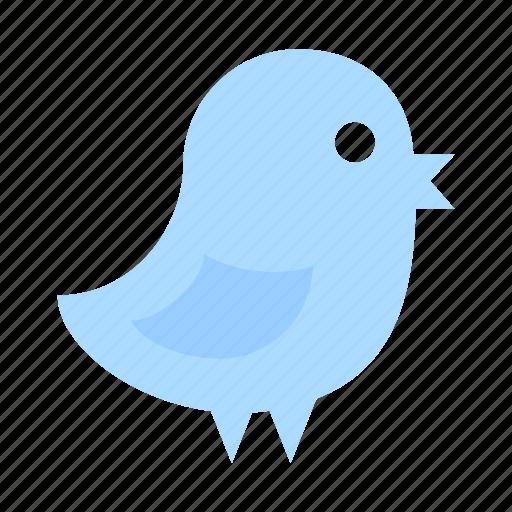 bird, chick, fly, media, social, tweet, twitter icon