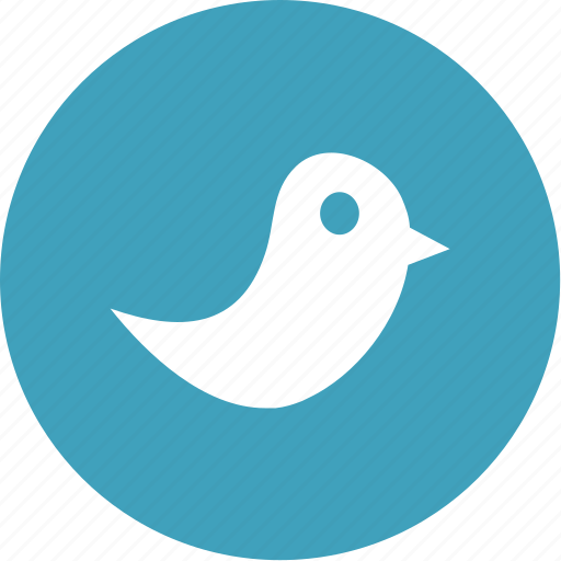 bird, media, network, social, twitter icon