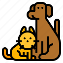 animal, cat, communication, dog