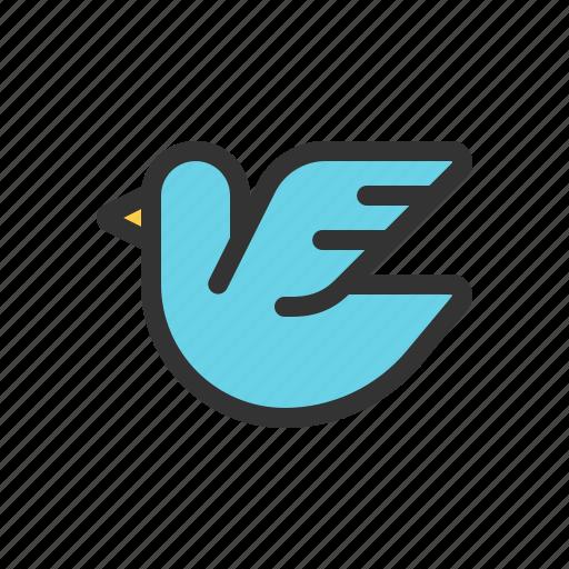 bird, messenger, pigeon, twitter icon