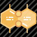 cogwheel, diagram, formula, sequence icon