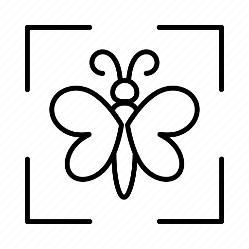 Butterfly, conservation, ecology, environment, environmental, sustainability, sustainable icon - Download on Iconfinder