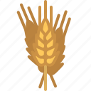 bakery, cooking, gastronomy, gluten, ingredient, wheat, yumminky icon