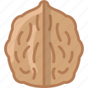 cooking, food, gastronomy, ingredient, nut, walnut, yumminky icon