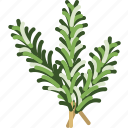 cooking, food, gastronomy, herbs, ingredient, rosemary, yumminky icon