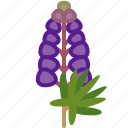 cooking, food, gastronomy, ingredient, lupine, plant, yumminky icon