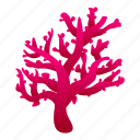 reef, coral, water, star, summer icon