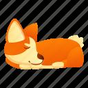 baby, corgi, dog, nature, sleeping