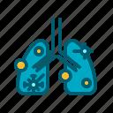 disease, health, lungs, organ, respiratory