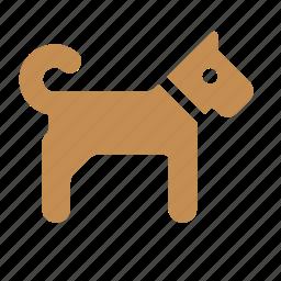 animal, best friend, dog, friend, pet icon