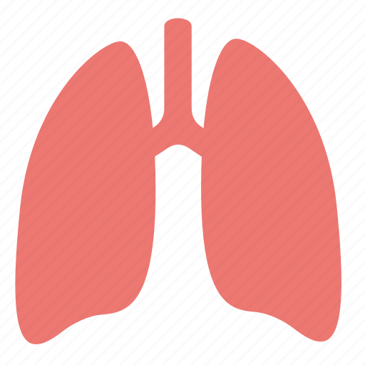 anatomy, body, health, human, lungs, medicine, organ icon
