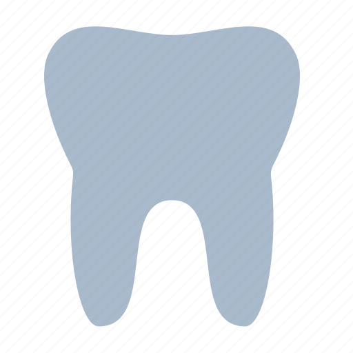 biology, dental, dentist, health, stomatology, tooth icon