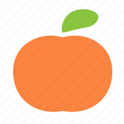 citrus, fruit, mandarine, sweet icon