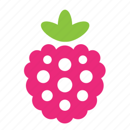 berry, food, healthy, raspberry icon