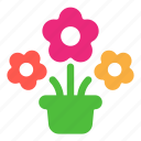 plant, flowers, gift, ecology icon