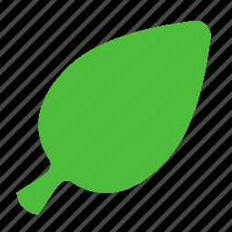eco, leaf, nature, news icon