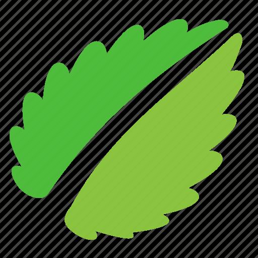 eco, fresh, leaf, nature, news icon
