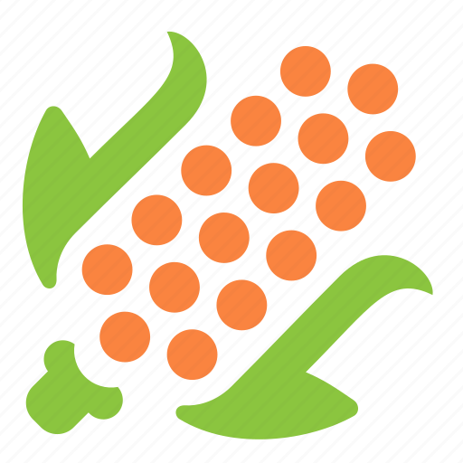 corn, food, healthy, ingredient, vegetable icon