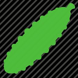 cucumber, fresh, ingredient, vegetable icon